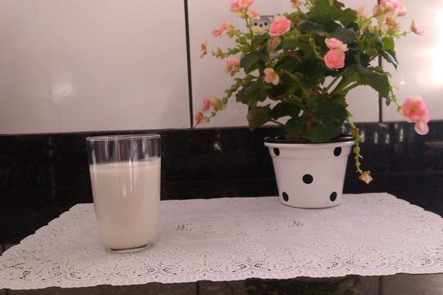 Fiz leite de aveia e deu certo – Receita caseira de leite vegetal