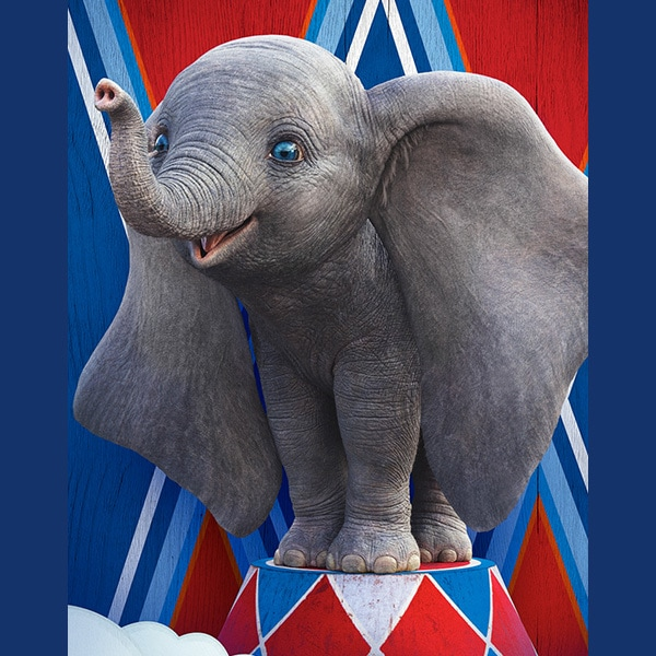 Um pouco de Dumbo e um pouco de Jumbo